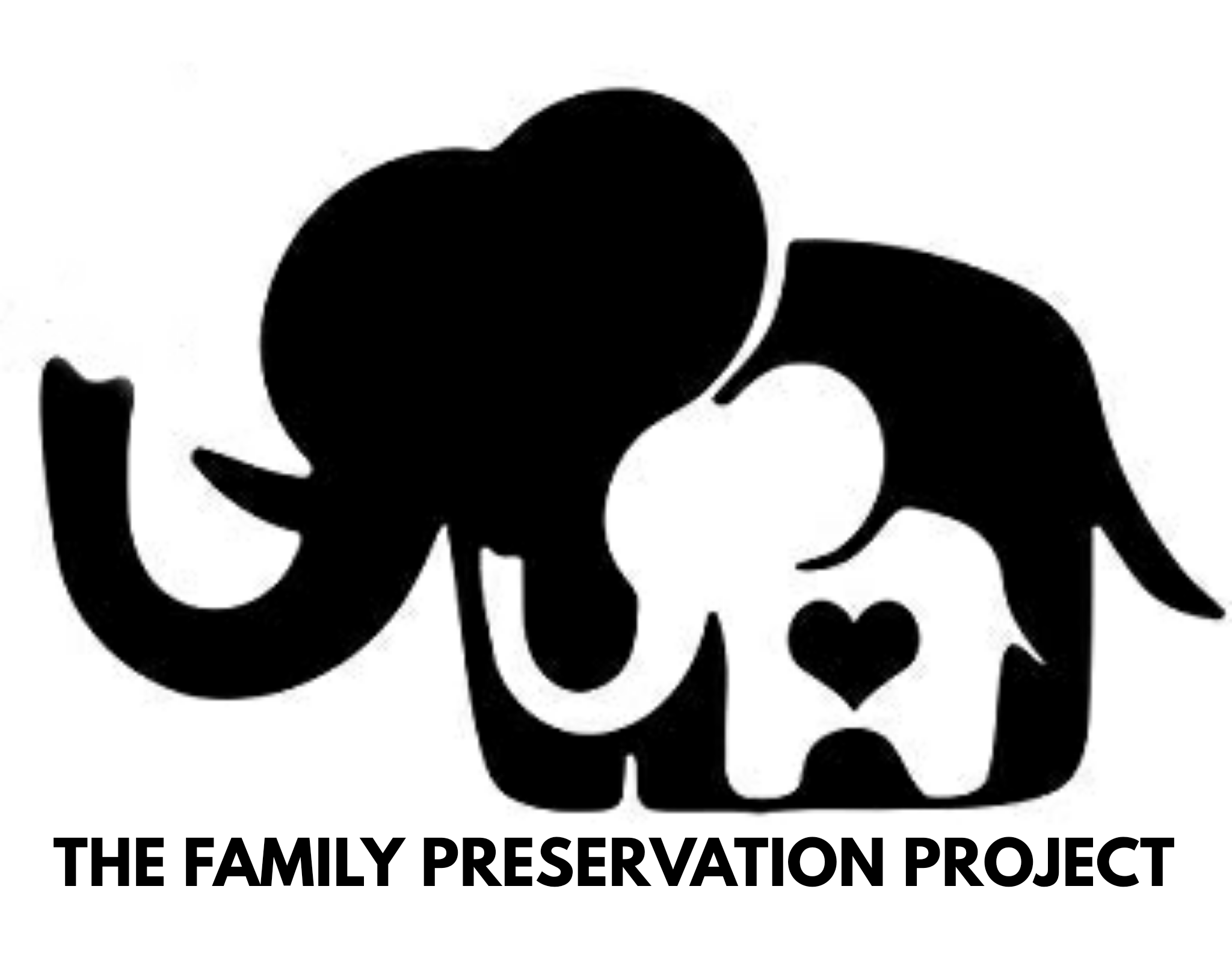The Family Preservation Project
